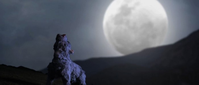 THE SHEPHERD BOY AND THE WOLF: A STOP-MOTION ADAPTATION